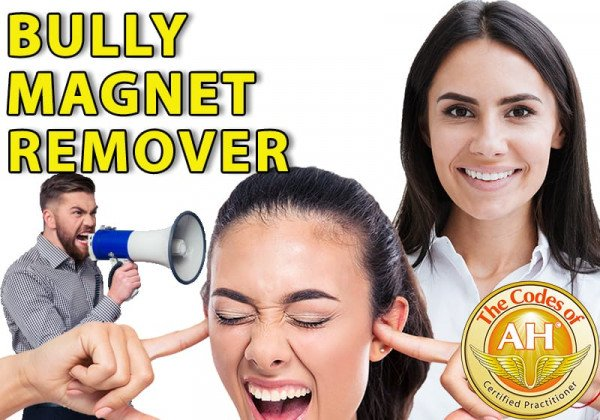 Bully Magnet Remover with Codes of AH