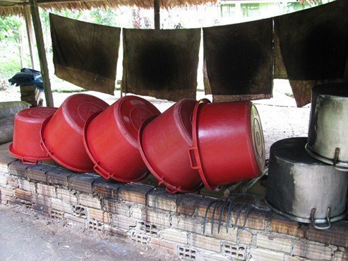Red basins for washing the Banisteriopsis Caapi Vine and Chacruna leaves.